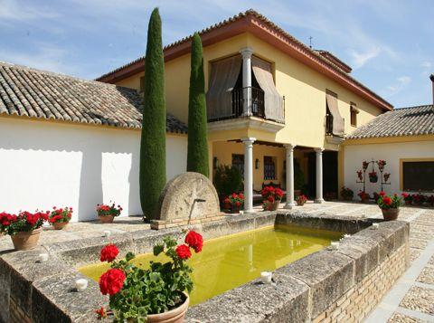 FINCA EL ARENAL  (Castilla La Mancha)